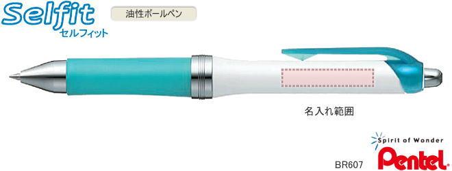 セルフィット 名入れ油性ボールペン30本~